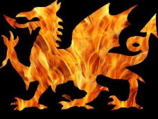 black_fire_dragon