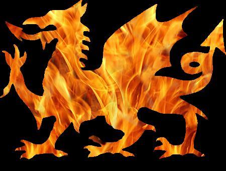 black_fire_dragon